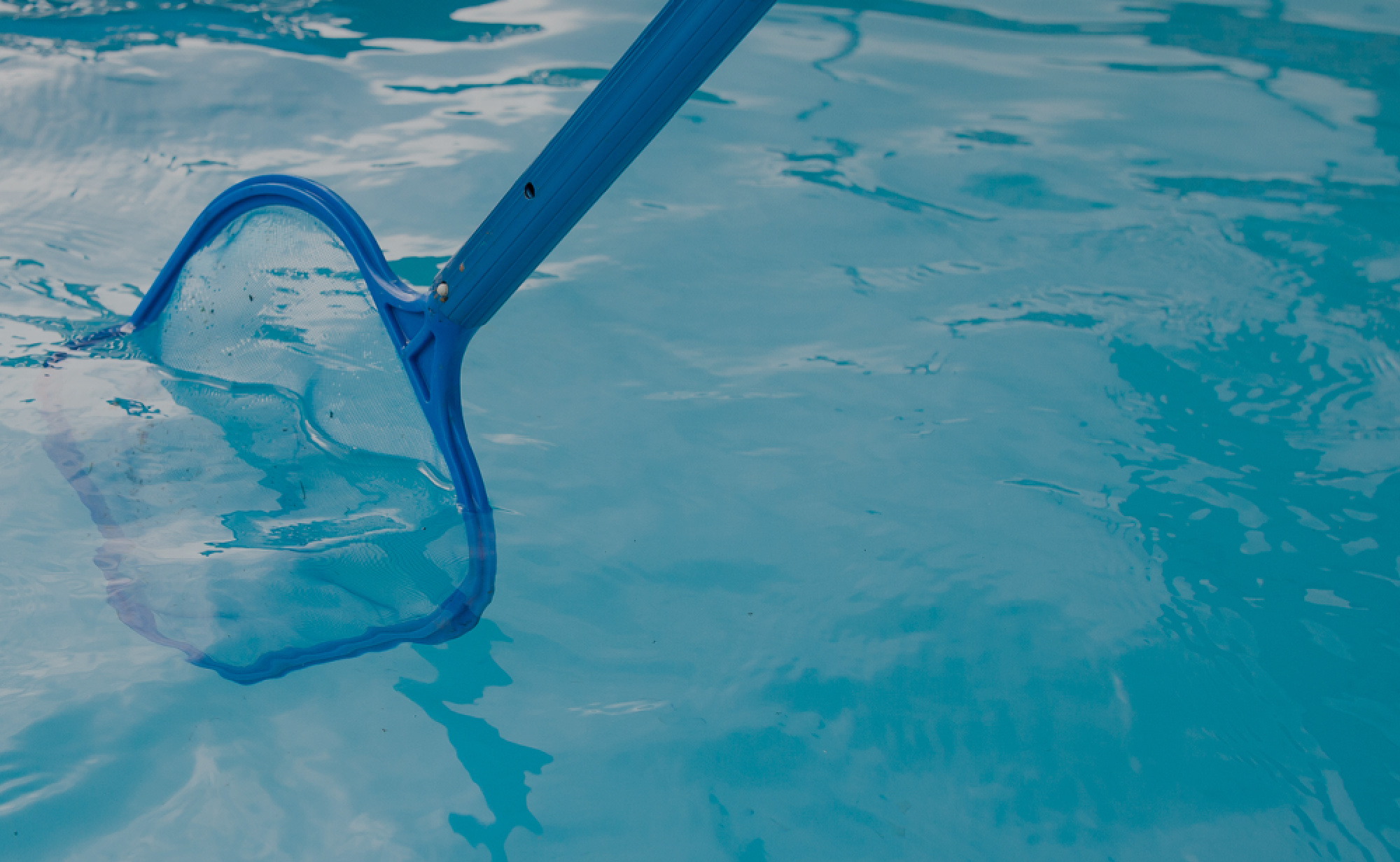 Pool Maintenance Guide